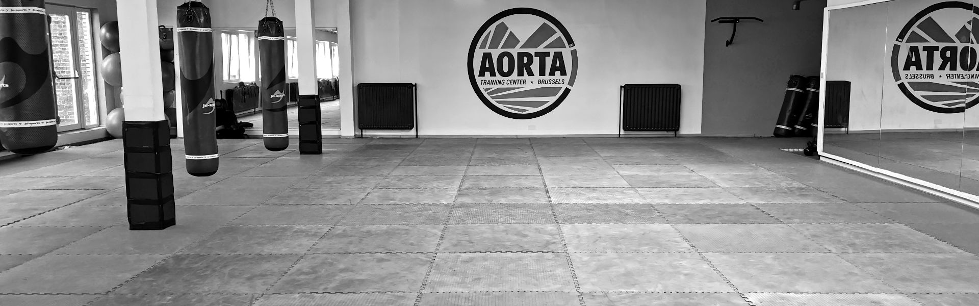 Our place Aorta Training Center